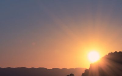 Energía solar fotovoltaica la que crece más en 2016